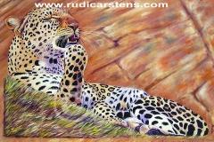 leopard-rock